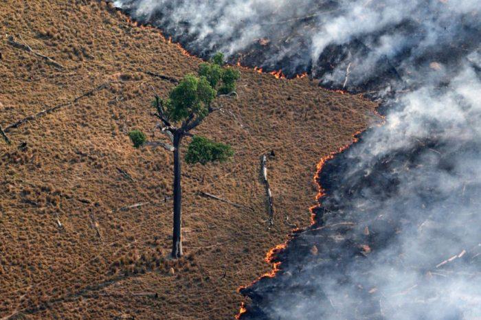 Bolsonaro rechaza ayuda económica del G7 para rescate del Amazonas