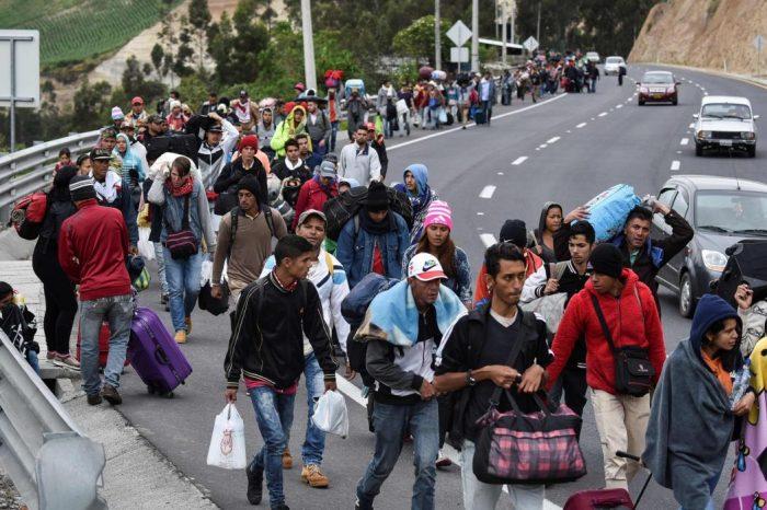 Datanálisis: 46,2% de los venezolanos piensa en emigrar y 17,7% son chavistas