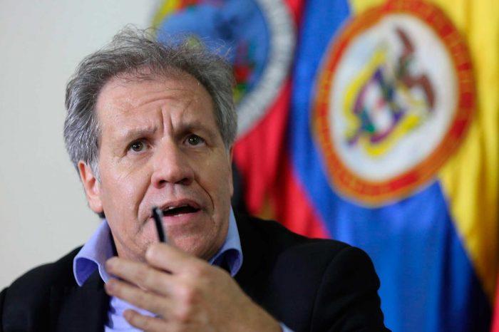 Almagro acusa al régimen de albergar a Hezbolá, el ELN y las FARC