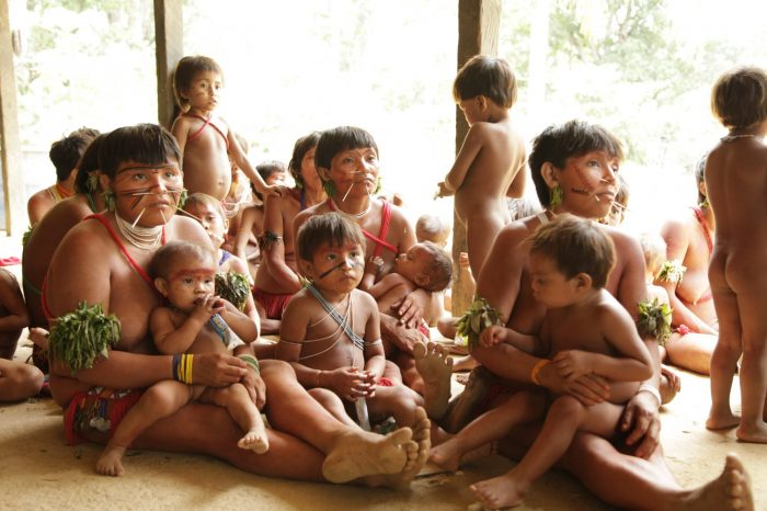 Yanomamis exigen a la OEA salida de mineros ilegales que explotan oro, para frenar pandemia