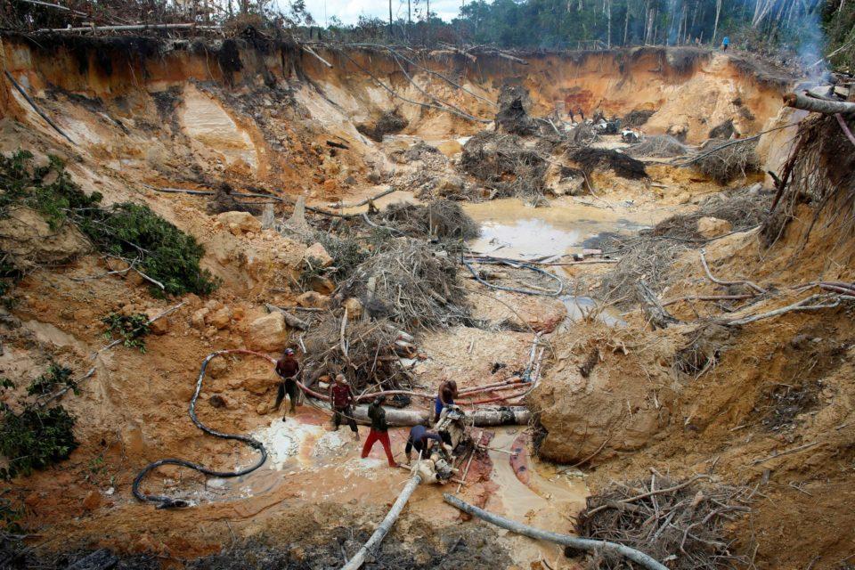 destrucción ambiental en Venezuela - Primer Informe