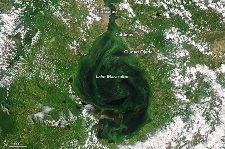 lago de maracaibo primer informe